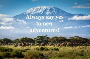 Always say yes to adventures