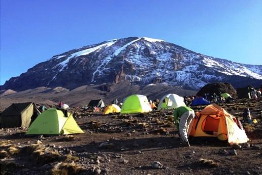 Kilimanjaro Safari Og Zanzibar Oplev At Det Bedst Tanzania Har At