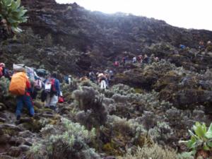 gå på Kilimanjaro