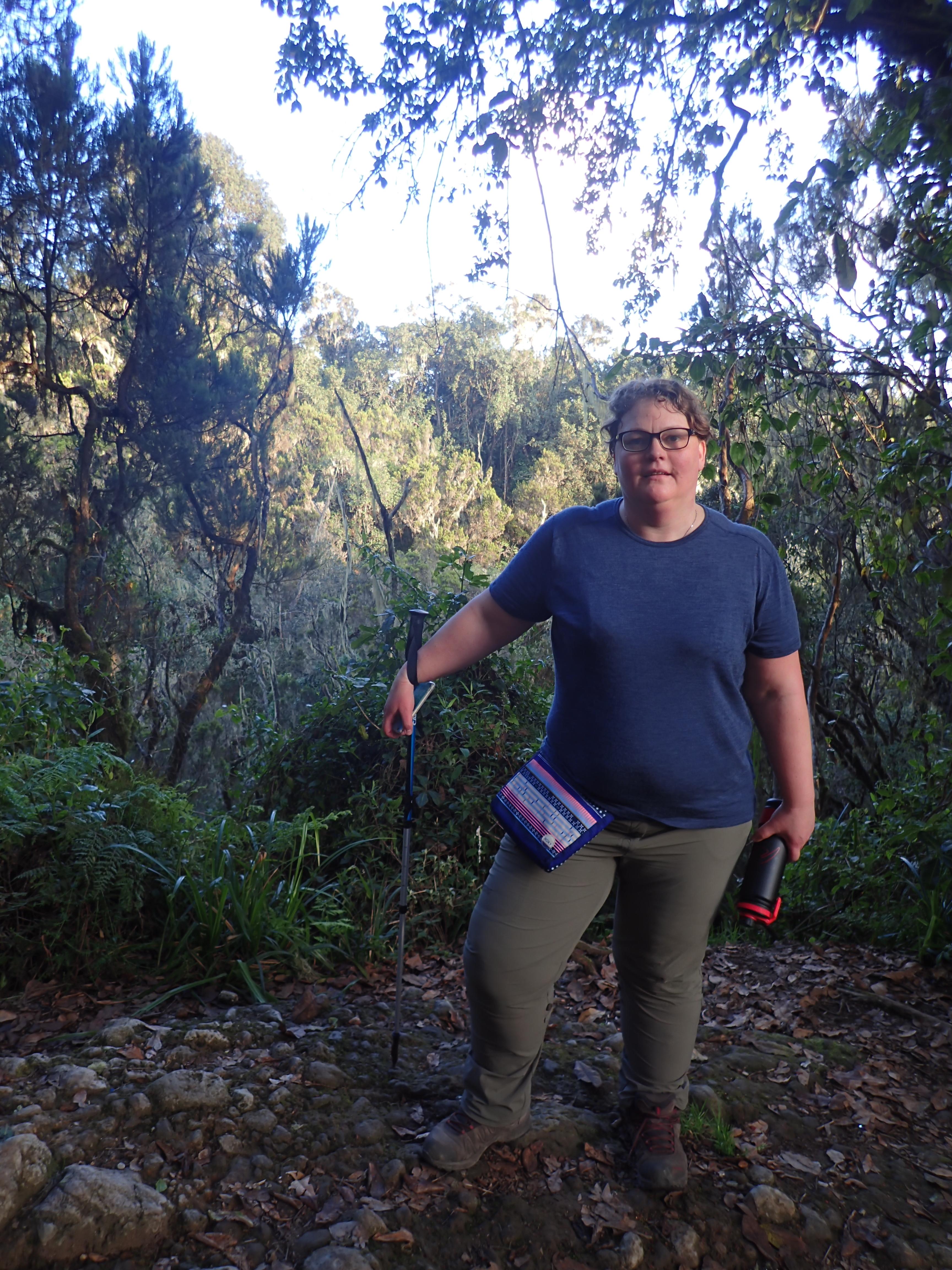 Var Projekt Kilimanjaro en succes?